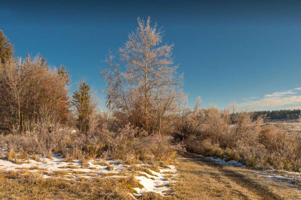 Sepa Lake Trail after snowfall